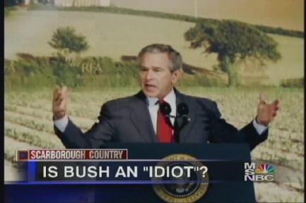 bush-idiot2.jpg