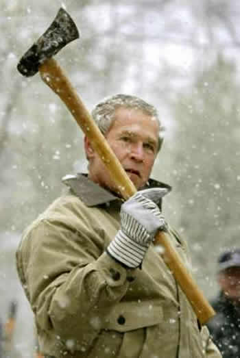 bush with an axe
