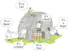 Blind Elephant examiners